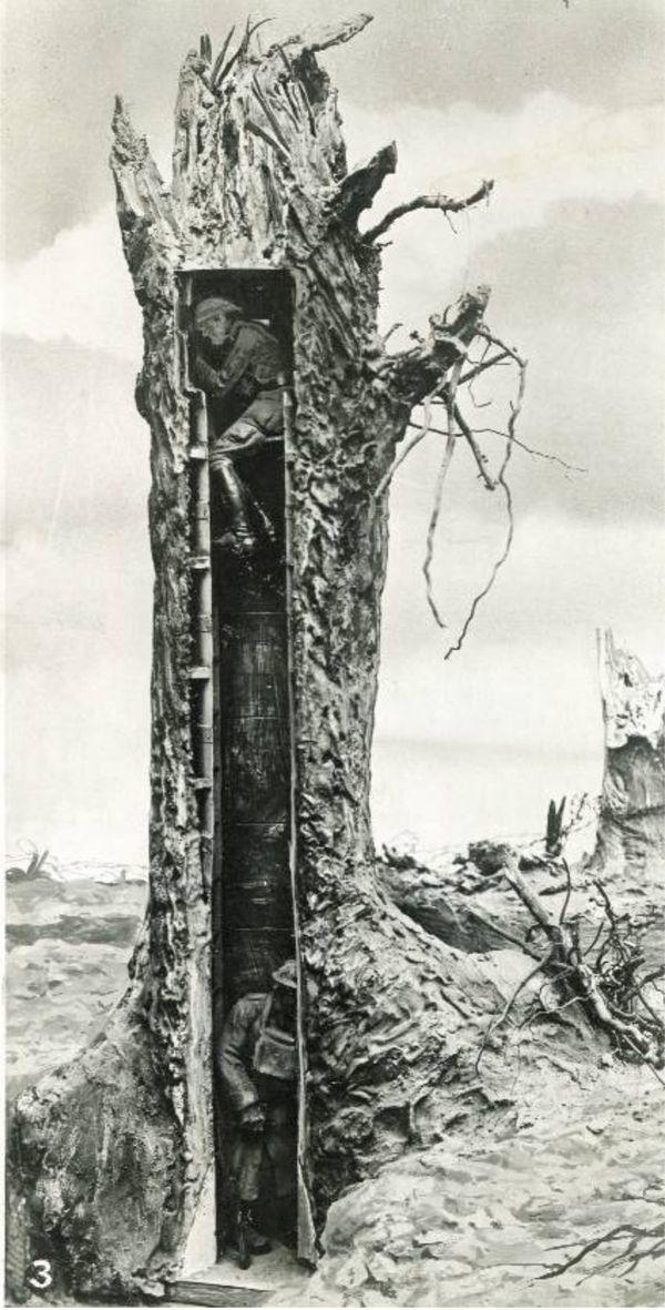Le premier arbre factice sorti de l'atelier de camouflage d'Amiens
