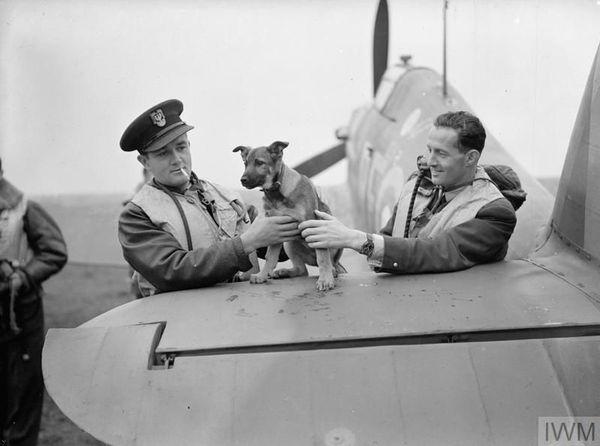 Jan Zumbach (à gauche) et Miroslaw Feric, en compagnie de la mascotte du 303 Squadron, à Leconfield, le 24 octobre 1940.