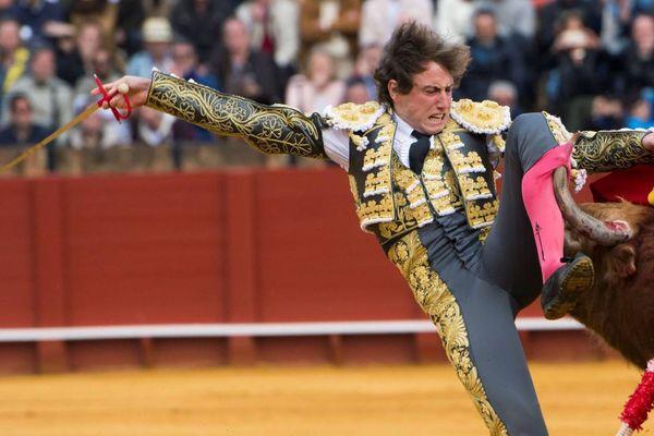 Le matador Román a été blessé dès le début de sa première faena.