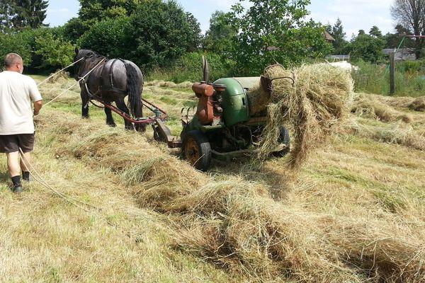 L'association « aux coul'Eure du cheval » réaliseront les travaux agricoles à l'ancienne.