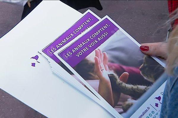 Le parti animaliste est représenté dans le Rhône par Nathalie Deahn, candidate dans la 3ème circonscription du Rhône.
