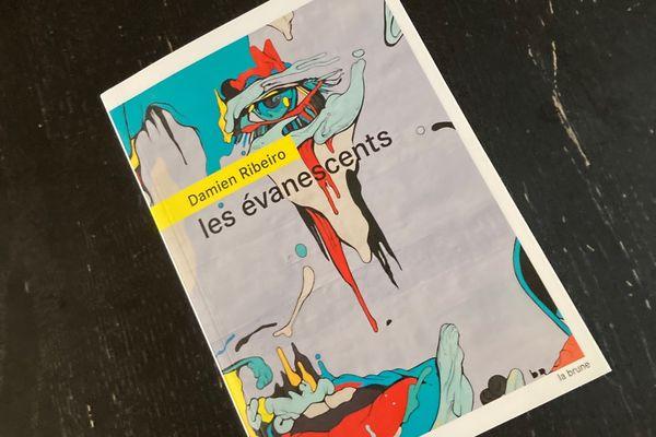 """""""Les évanescents"""" de Damien Ribeiro aux éditions """"la brune au rouergue"""""""