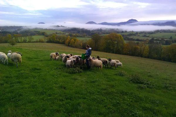 Les élèves du lycée agricole de Rochefort-Montagne (Puy-de-Dôme) alternent entre cours pratiques à la ferme et salles de classes.