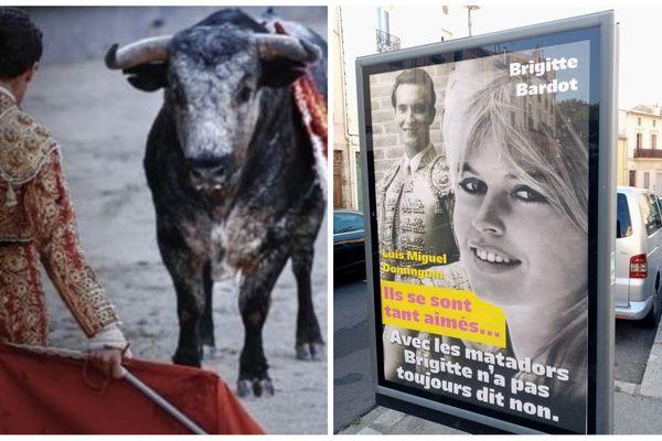 Les visuels de la Fondation Brigitte Bardot (à gauche) et de la mairie de Béziers (à droite).