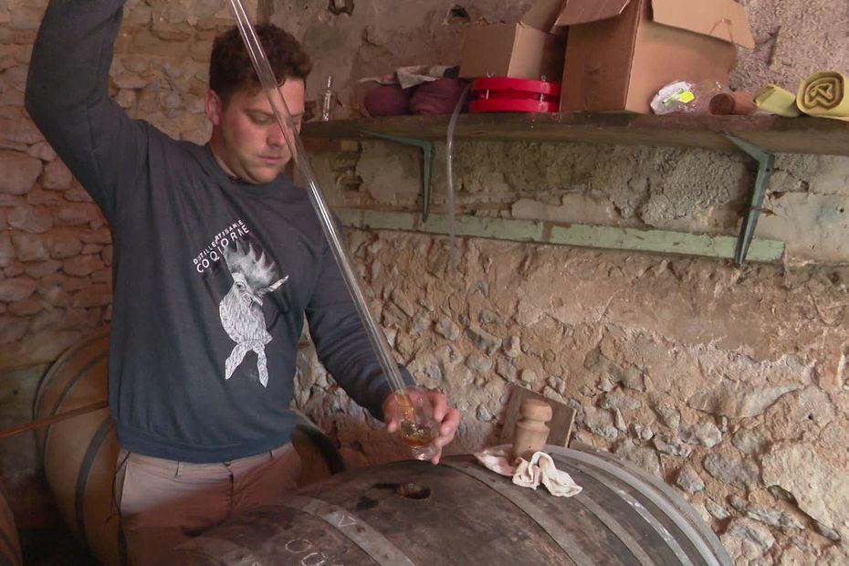 Sarthe : Ugo distille gin et vodka dans la plus pure tradition