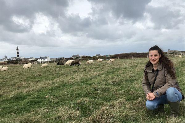 Charlène dont la famille est originaire de Ouessant se lance dans l'élevage de brebis sur l'île, un moyen pour elle de créer sa propre activité, dans un endroit qu'elle adore