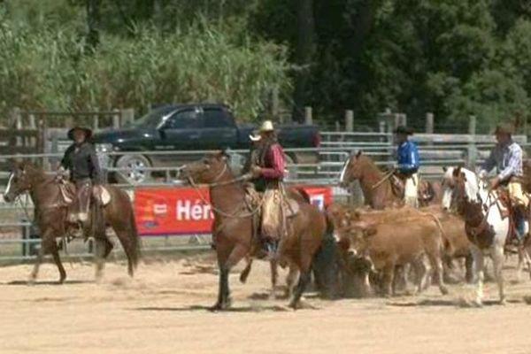 L'équitation western est devenue un vrai loisir. Montarnaud. Août 2014.