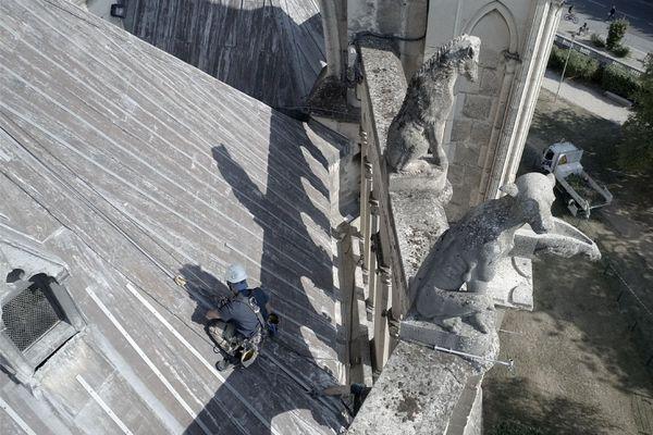 Un cordiste travaille sur la toiture de la cathédrale de Reims
