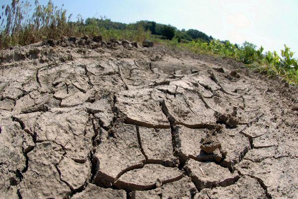 La sécheresse risque de s'aggraver en Isère avec le nouvel épisode de chaleur prévu dans les prochains jours. Photo d'archives.