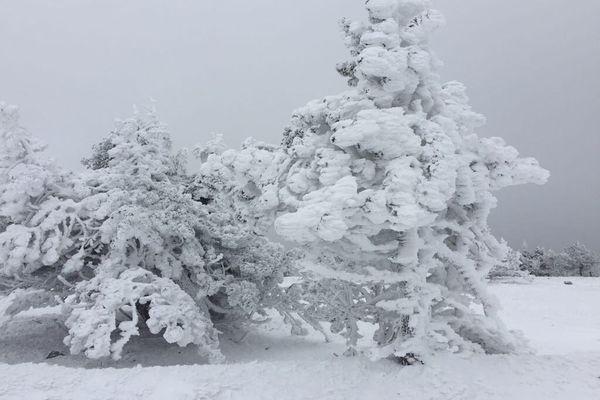 Mont-Aigoual, le 1er décembre 2017