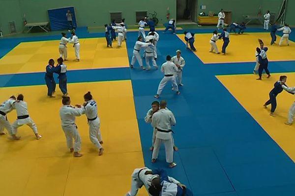 L'équipe de France féminine de judo prête à en découdre sur les tatamis montpelliérains pour se préparer à l'échéance mondiale qui débutera le 20 septembre à Bakou en Azerbaïdjan.