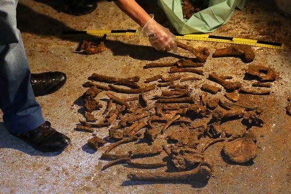 Les ossements humains retrouvés dans une cave de la rue Voltaire à Lille.