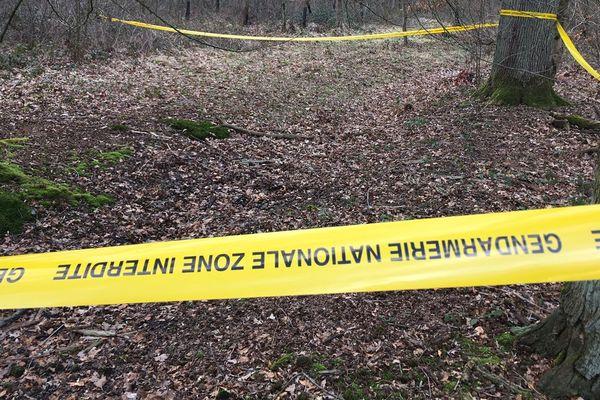 Le corps a été retrouvé dans le bois de la Tassonnière à Cysoing
