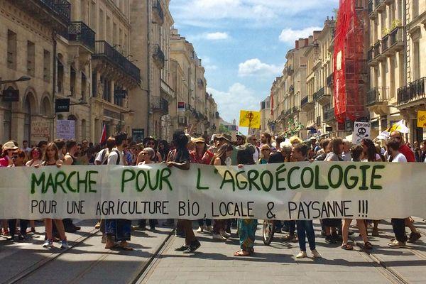 Plus de 300 personnes ont participé à la 6e marche mondiale contre Monsanto à Bordeaux, le samedi 19 mai 2018.