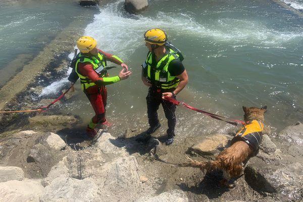 Les sauveteurs spécialisés en cynotechnique sont aidés par des chiens pour localiser des victimes inconscientes (ici le 13 juin à Comps dans le Gard)
