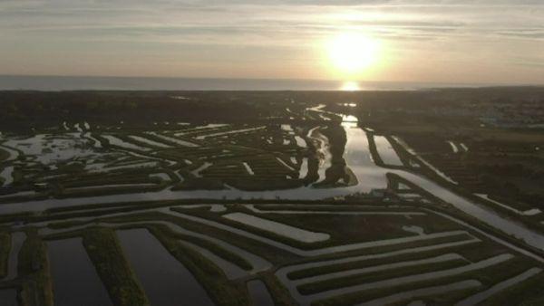 Le marais breton en Vendée