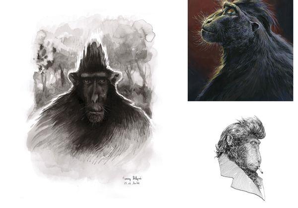 Le macaque à crête a inspiré nombre de dessinateurs