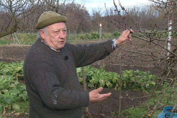 Les arbres de Jean-Louis Ramain ont déjà souffert du gel puis et de la sécheresse en 2019