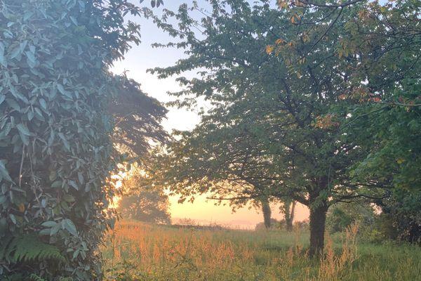 Sophie de Kerno s'estime chanceuse de vivre le confinement sur l'Ile-aux-Moines : la vue depuis son jardin est réconfortante