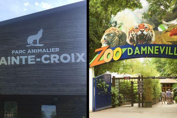 Réouverture des parcs animaliers en Moselle en ce début du mois de juin 2020