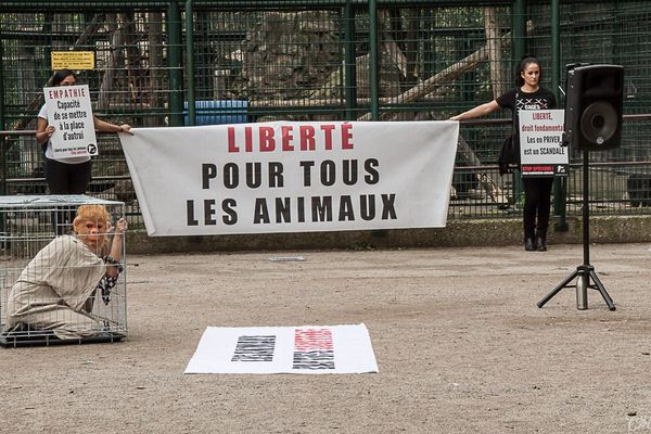 Les associations qui luttent pour la cause animale, Animalise et 269 Life France demandent la liberté pour tous les animaux.