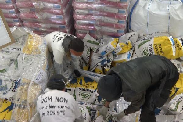 """Une cinquantaine de """"Faucheurs d'OGM """" ont éventrés des sacs de semences à Castelnaudary"""