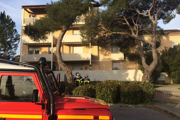 Intervention des pompiers à Montpellier pour sécuriser un arbre déraciné par le vent. 6/03/2017