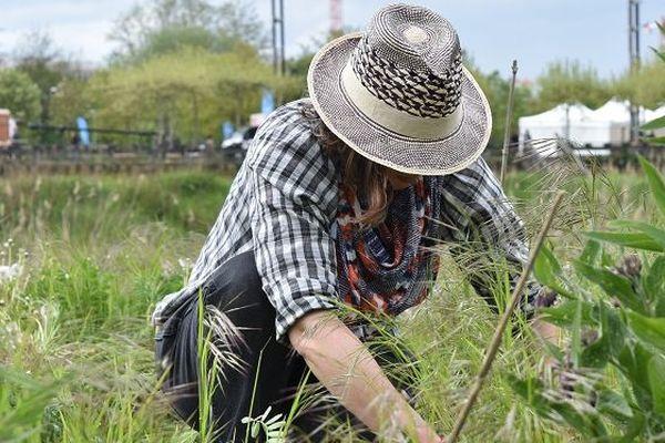 L'association Incroyables Comestibles propose aux marcheurs de faire de planter des fleurs dans les jardins de Jean-Marie Pelt, durant le village éco-citoyen.