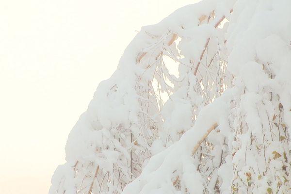 C'est une neige lourde et humide tombée en abondance ces derniers jours qui est à l'origine de l'avalanche en Italie