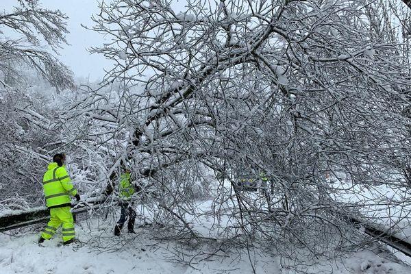 De nombreux arbres tombés sous le poids de la neige sont à dégager des routes