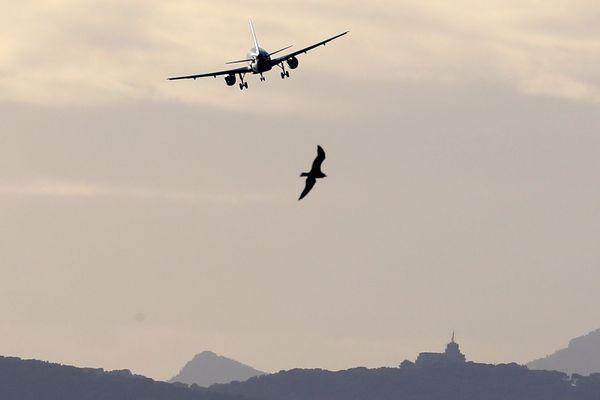 117 destinations ont été proposées à l'aéroport de Nice Côte d'Azur cet été.