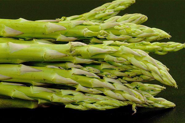 L'asperge, originaire de l'est du bassin méditerranéen, était déjà connue au temps des Romains. Elle est cultivée comme plante potagère en France depuis le XVᵉ siècle.