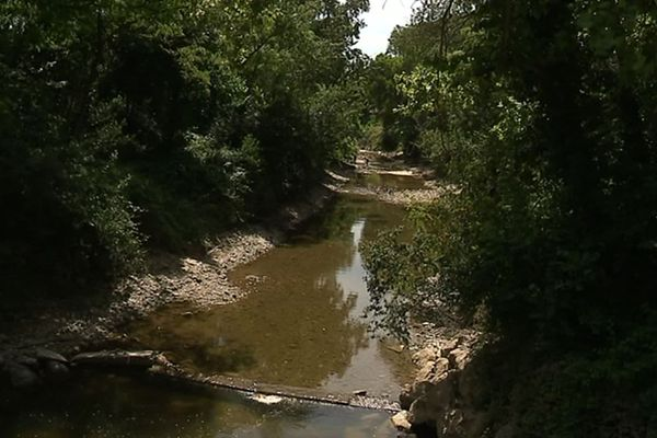 C'est dans ce fleuve que seront installées quatre hydroliennes, dans le but de produire de l'électricité pour 200 foyers.
