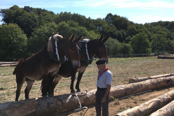 Léon donne ses ordres en patois du pays basque et parle au public de l'intelligence de ses mules
