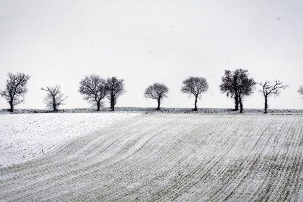 La neige et le froid seront de retour à partir de mardi 2 avril. Et pas de jaloux : le Puy-de-Dôme, l'Allier, la Haute-Loire et le Cantal, tout le monde sera concerné.