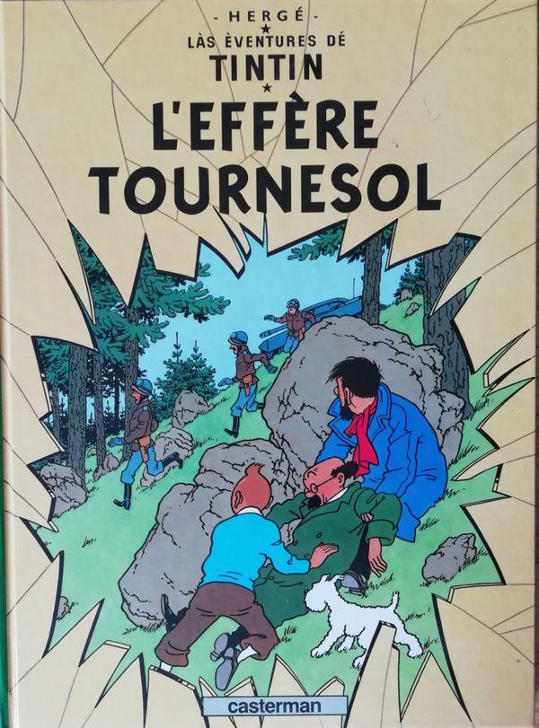 """Les patoisants s'étaient déjà attaqué à Tintin en 2009, avec la traduction de """"L'affaire Tournesol""""."""