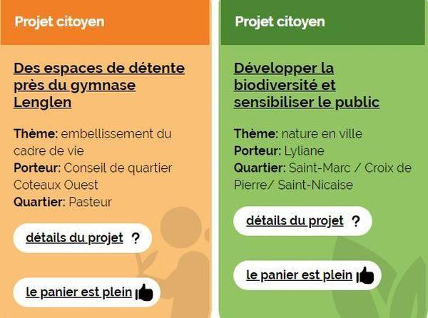 Exemples de projets citoyens soumis au vote