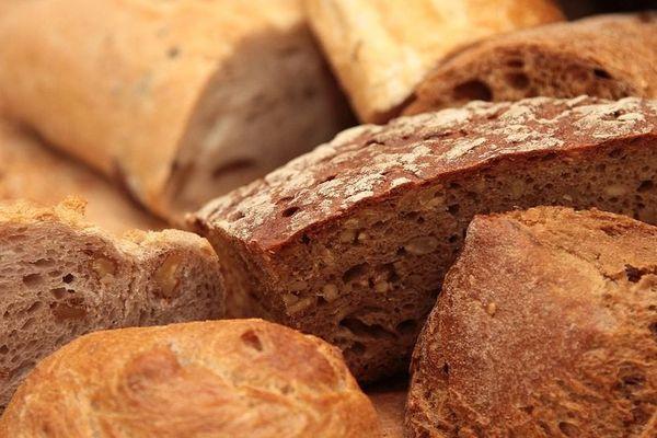 Eurogerm, producteur de produits pour la filière blé-farine-pain, est basé à Dijon.
