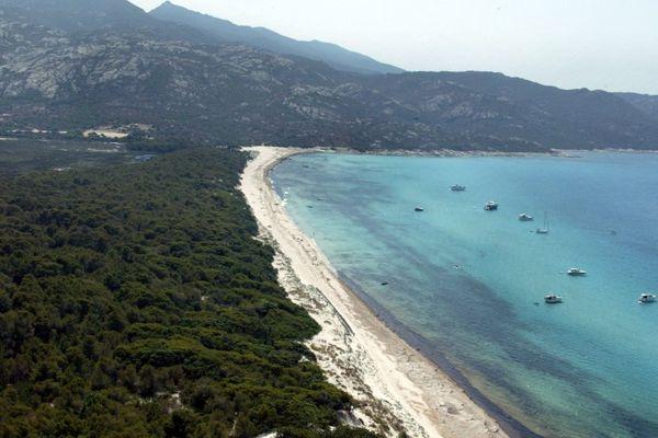 ILLUSTRATION - Plage de Saleccia dans les Agriates (Haute-Corse)