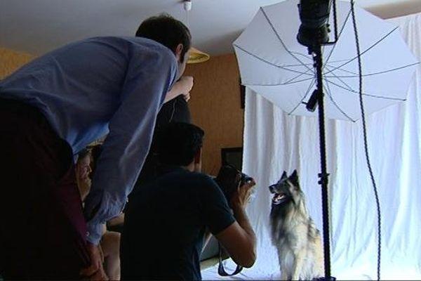 Greyhaslan en pleine séance de shooting... avant la gloire!