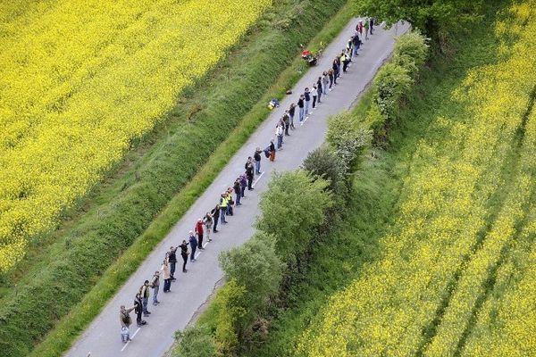 Au milieu du colza, la chaîne humaine à Notre-Dame-des-Landes