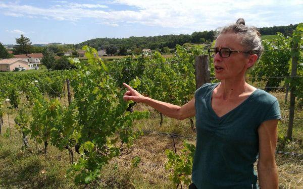 Audrey Chassenard, domaine Salisquet à Vianne (47), viticultrice bio.