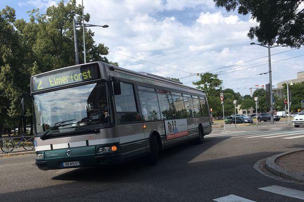 Les bus paraissent moins austères une fois habillés.