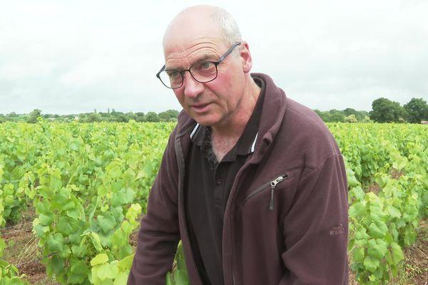 Christian Gauthier, viticulteur dans le Muscadet, annonce des vendanges plus tardives que d'ordinaire.