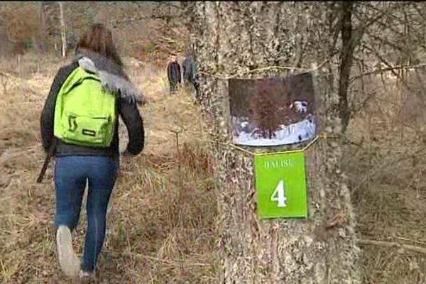 Une vingtaine de balises doit être trouvée par les enfants dans la forêt de la Pinatelle dans le Cantal