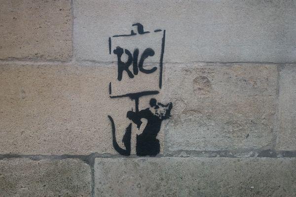 Le rat anarchique supposé de Banksy à Bordeaux.