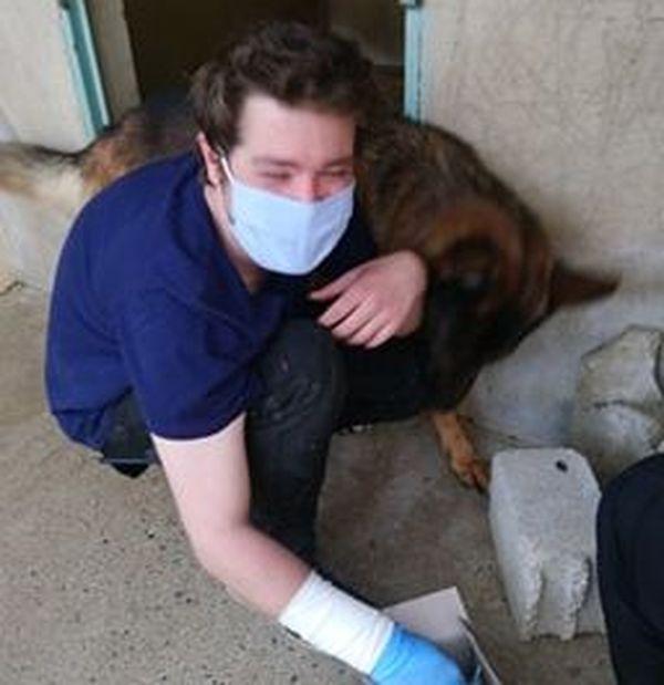 Dans ce refuge, les employés travaillent avec gants et masques depuis le début du confinement.