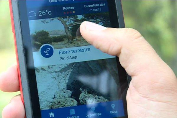 """L'application """"Mes calanques"""" vous permet d'avoir un guide personnel dans votre smartphone."""