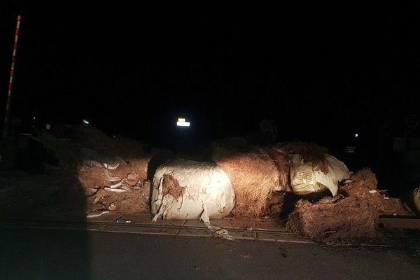 Des déchets ont été déversés cette nuit en gare de Longages (31) par des agriculteurs.