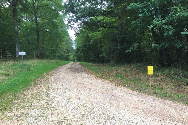 L'un des chemins ruraux mis en vente par la mairie de Chatillon-en-Bazois.